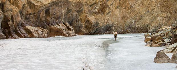Zamarznięta rzeka Zanskar. Trekkingi górskie