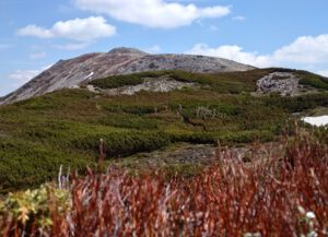 Widok na szczyt Babiej Góry