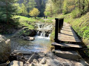 Potok i mostek w dolinie